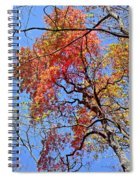 Fall Trees 2 Of Wnc Spiral Notebook
