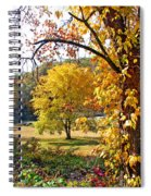 Fall Trees 4 Of Wnc Spiral Notebook