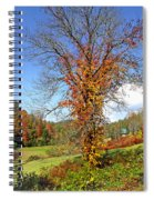 Fall Trees 5 Of Wnc Spiral Notebook