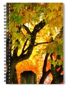 Fall Trees On A Country Road 3 Spiral Notebook