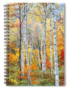 Fall Trees, Shinhodaka, Gifu, Japan Spiral Notebook