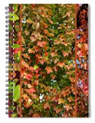 Fall Trio Collage Spiral Notebook