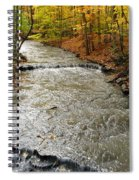 Fall Waters Spiral Notebook