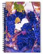 Fall Wine Grapes Spiral Notebook