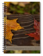 Fallen As If Placed Spiral Notebook