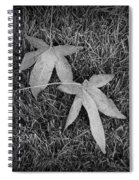 Fallen Autumn Leaves In The Grass During Morning Frost Spiral Notebook