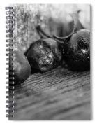 Fallen Berries Spiral Notebook