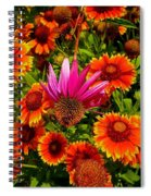 Fallen Coneflower Spiral Notebook