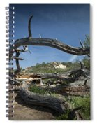 Fallen Dead Torrey Pine Trunk At Torrey Pines State Natural Reserve Spiral Notebook