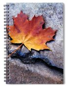 Fallen Hard Spiral Notebook