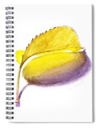 Fallen Leaf Yellow Shadows Spiral Notebook
