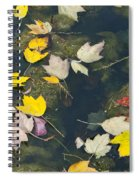 Fallen Leaves 2 Spiral Notebook