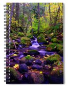 Fallen Leaves On The Rocks Spiral Notebook