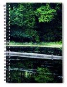 Fallen Log In A Lake Spiral Notebook