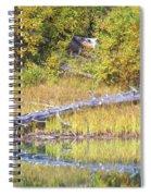 Fallen Timber  Spiral Notebook