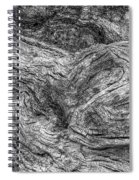 Fallen Tree Bark Bw Spiral Notebook