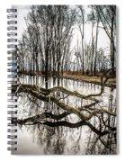 Fallen Tree Reflection Spiral Notebook