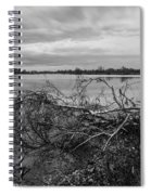 Fallen Trees At The Lake Spiral Notebook