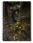 Falling At Your Feet Spiral Notebook