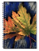 Falling For Colour Spiral Notebook