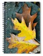 Falls Carpet Spiral Notebook