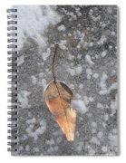 Fall's Fallen Meets Spring Sunshine Spiral Notebook