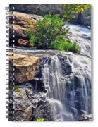 Falls Of Reedy River Spiral Notebook