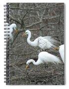 Family Affair Egrets Louisiana Spiral Notebook