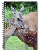 Family Hug Spiral Notebook