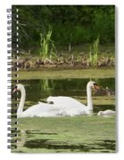 Family Is Everything Spiral Notebook