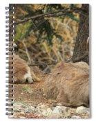 Family Nap Spiral Notebook