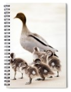 Family Of Ducks Spiral Notebook