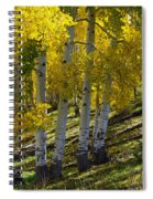 Family Of Four Spiral Notebook