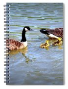 Family Of Geese Out For A Swim Spiral Notebook