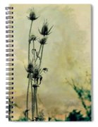 Family Of Teasels Spiral Notebook