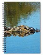 Family Of Turtles Spiral Notebook