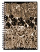Family Portrait Before The Hunt-featured Picture In Large Dogs Only Group Spiral Notebook