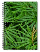 Fan Club Moss Foliage Spiral Notebook