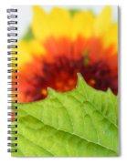 Fan Dance  Spiral Notebook