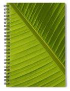 Fan Of Green 2 Spiral Notebook