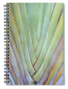 Fan Palm Abstract 2 Spiral Notebook