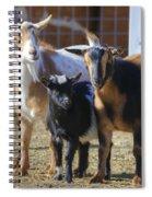 Fancy Goats Spiral Notebook