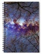 Fantasy Stars Milkyway Through The Trees Spiral Notebook