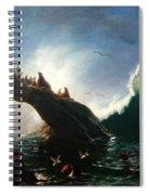 Farallon Island Spiral Notebook