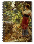 Faraway Thoughts Spiral Notebook