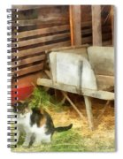 Farm Cat Spiral Notebook