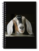 Farm Favorite Spiral Notebook