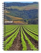 Farm Lands Of The Central Coast By Diana Sainz Spiral Notebook