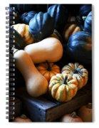 Farm Market Acorn Butternut And Carnival Squash Michigan Usa Spiral Notebook