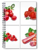 Farmers Market Gifts Red Vitamins Spiral Notebook